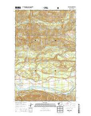 Hamilton Washington Current topographic map, 1:24000 scale, 7.5 X 7.5 Minute, Year 2014 from Washington Maps Store