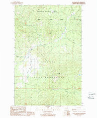 Moses Meadows Washington Historical topographic map, 1:24000 scale, 7.5 X 7.5 Minute, Year 1989