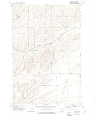 Pizarro Washington Historical topographic map, 1:24000 scale, 7.5 X 7.5 Minute, Year 1972