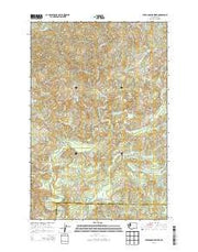 Upper Naselle River Washington Current topographic map, 1:24000 scale, 7.5 X 7.5 Minute, Year 2013 from Washington Maps Store