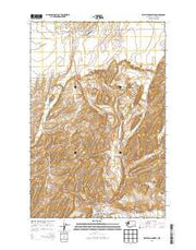 Washtucna North Washington Current topographic map, 1:24000 scale, 7.5 X 7.5 Minute, Year 2013 from Washington Maps Store