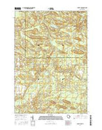Burney Lake Wisconsin Current topographic map, 1:24000 scale, 7.5 X 7.5 Minute, Year 2016 from Wisconsin Map Store