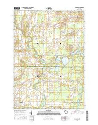 Embarrass Wisconsin Current topographic map, 1:24000 scale, 7.5 X 7.5 Minute, Year 2016