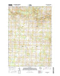 Little Rose Wisconsin Current topographic map, 1:24000 scale, 7.5 X 7.5 Minute, Year 2015