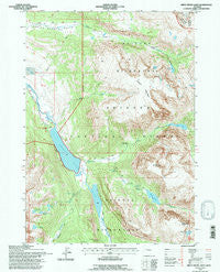 Green River Lakes Wyoming Historical topographic map, 1:24000 scale, 7.5 X 7.5 Minute, Year 1991