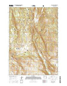 Indian Point Wyoming Current topographic map, 1:24000 scale, 7.5 X 7.5 Minute, Year 2015