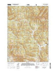 Mount Leidy Wyoming Current topographic map, 1:24000 scale, 7.5 X 7.5 Minute, Year 2015