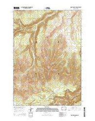 Mount Washburn Wyoming Current topographic map, 1:24000 scale, 7.5 X 7.5 Minute, Year 2015