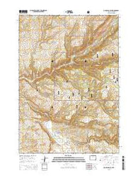 Old Maid Gulch Wyoming Current topographic map, 1:24000 scale, 7.5 X 7.5 Minute, Year 2015