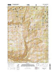 Onion Gulch Wyoming Current topographic map, 1:24000 scale, 7.5 X 7.5 Minute, Year 2015
