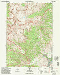 Ptarmigan Mountain Wyoming Historical topographic map, 1:24000 scale, 7.5 X 7.5 Minute, Year 1991