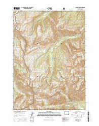 Ranger Peak Wyoming Current topographic map, 1:24000 scale, 7.5 X 7.5 Minute, Year 2015
