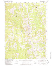 Rock Lake Peak Wyoming Historical topographic map, 1:24000 scale, 7.5 X 7.5 Minute, Year 1980