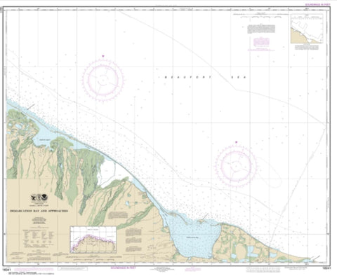 Buy map Demarcation Bay and approaches (16041-9) by NOAA