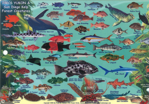 Buy map California Fish Card, HMSC Yukon 2005 by Frankos Maps Ltd.