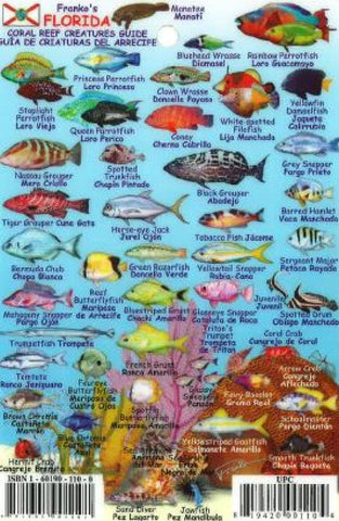 Buy map Florida Keys Mini Fish ID Card by Frankos Maps Ltd.
