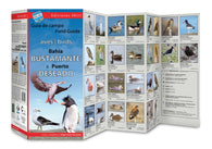 Buy map Bahia Bustamante & Puerto Deseado Field Guide (Birds) by 49southphoto