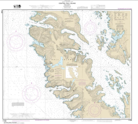 Buy map Central Dall Island and vicinity (17408-9) by NOAA