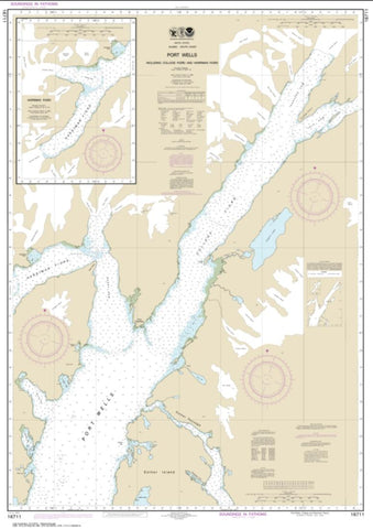 Buy map Port Wells, including College Fiord and Harriman Fiord (16711-3) by NOAA