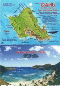 Buy map Oahu, The Gathering Place, Reef Creatures Guide by Frankos Maps Ltd.