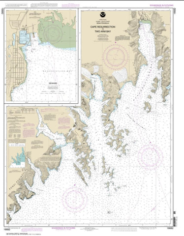 Buy map Cape Resurrection to Two Arm Bay; Seward (16682-17) by NOAA