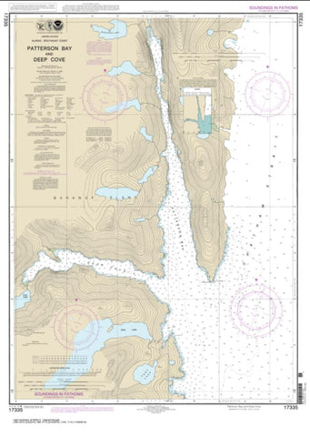 Buy map Patterson Bay and Deep Cove (17335-9) by NOAA
