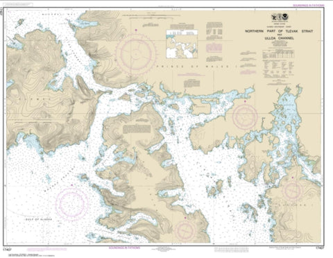 Buy map Northern part of Tlevak Strait and Uloa Channel (17407-16) by NOAA