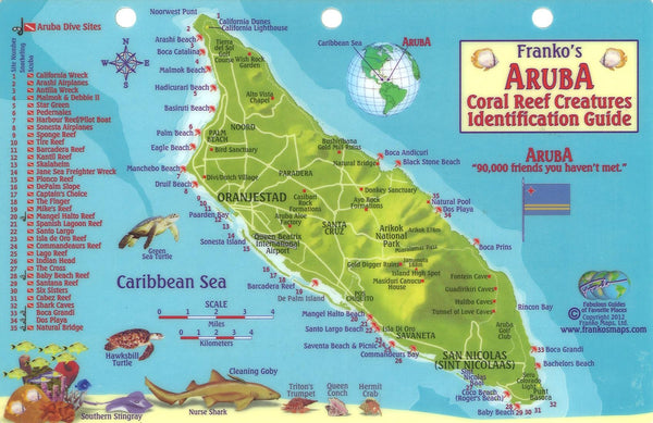 Buy map Aruba Reef Creatures Identification Guide by Frankos Maps Ltd.