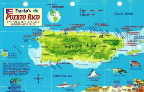 Buy map Caribbean Fish Card, Puerto Rico 2011 by Frankos Maps Ltd.