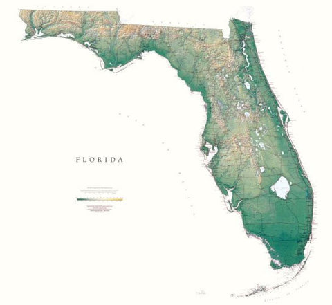 Buy map Florida, Physical, Laminated Wall Map by Raven Maps