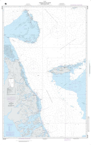 Buy map Tongue Of The Ocean - Northern Part (NGA-26308-5) by National Geospatial-Intelligence Agency