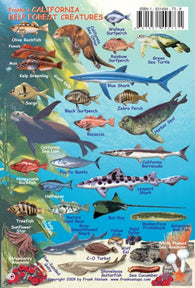 Buy map California, Kelp Forest Creatures Fish ID Card by Frankos Maps Ltd.