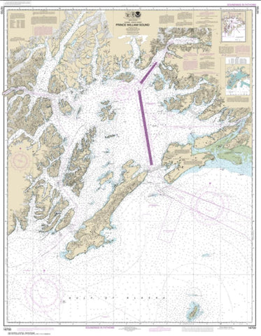 Buy map Prince William Sound (16700-32) by NOAA