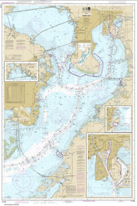 Buy map Tampa Bay; Safety Harbor; St. Petersburg;Tampa (11416-12) by NOAA