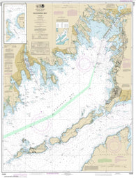 Buy map Buzzards Bay; Quicks Hole (13230-51) by NOAA