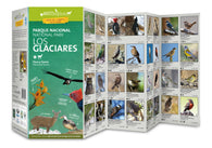 Buy map Los Glaciares Field Guide (Flora & Fauna) by 49southphoto