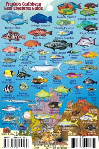 Buy map Caribbean Fish Card, Caribbean Mini Fish Card 2009 by Frankos Maps Ltd.