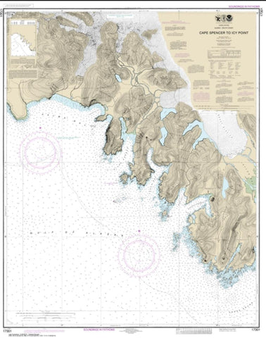 Buy map Cape Spencer to Icy Point (17301-9) by NOAA