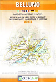 Buy map Belluno Province, Italy by Litografia Artistica Cartografica