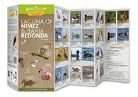 Buy map Laguna Nimez & Bahia Redonda (Birds) by 49southphoto