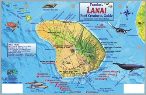 Buy map Guide to Lanai, Reef Creatures by Frankos Maps Ltd.