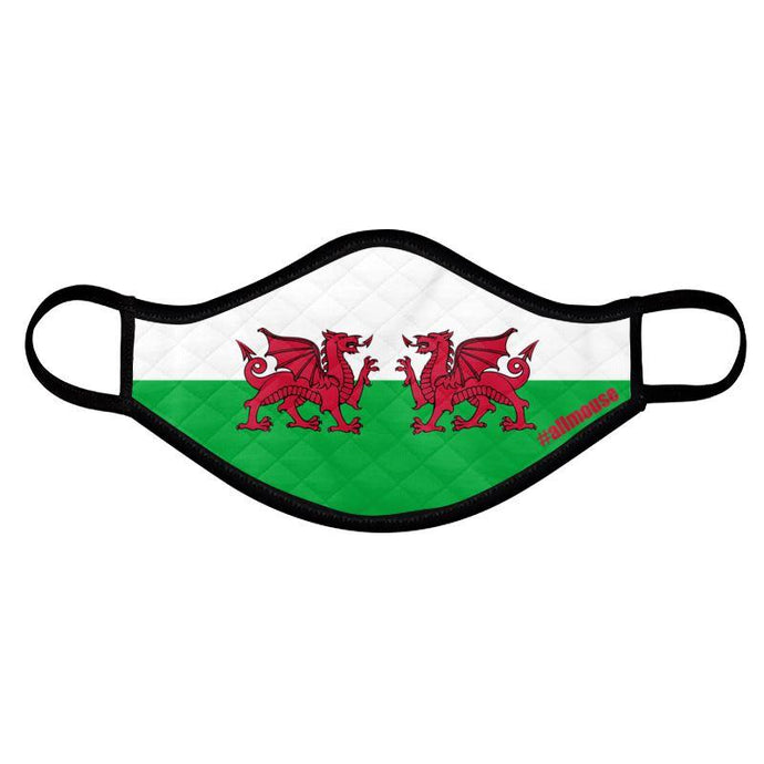Mirrored Welsh Dragon Flag Padded Face Mask