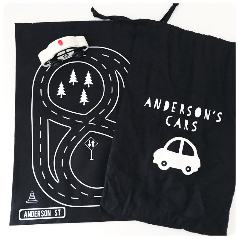 Take Along Car Bag