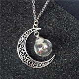 Dandelion Seed Glass Drifting Bottle Pendant Necklace
