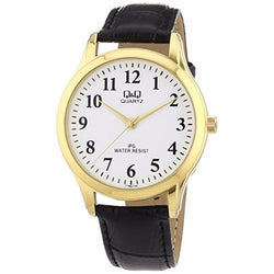 Q&Q C168J104Y Leather Watch for Men