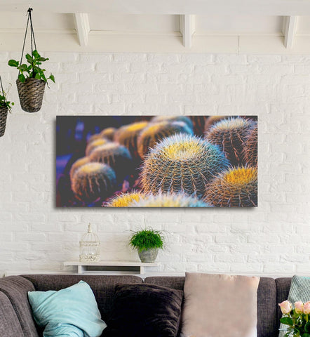 Plant Wall Art: Gold Fuzzy Cactus (Wood Frame Ready To Hang)