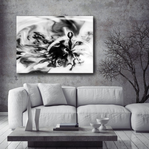 Paint Splash Wall Art: Black & White Splash Drop (Wood Frame Ready To Hang)