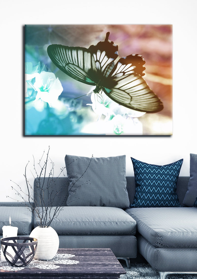 Insect Wall Art: Butterfly 1 (Wood Frame Ready To Hang)