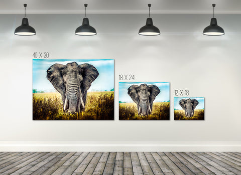 Home Decor Wall Art: Stunning Elephant Canvas (Wood Frame Ready To Hang)