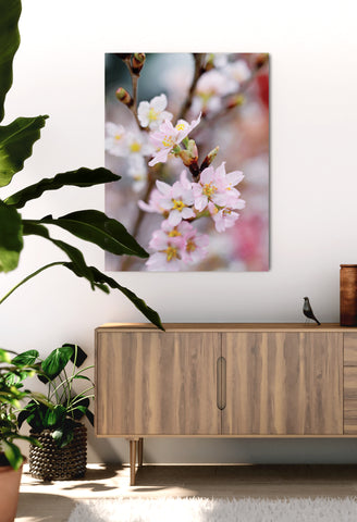 Flower Wall Art: Focused White And Pink Flowers  (Wood Frame Ready To Hang)